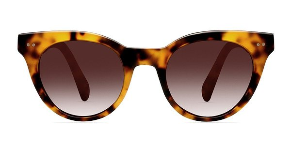 Divine prescription sunglasses (Brown/Tortoise)
